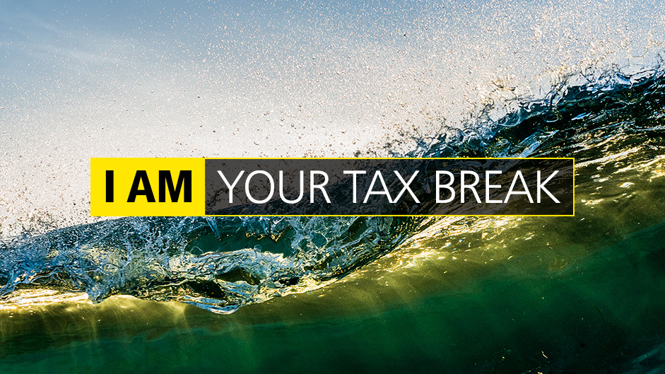 I AM YOUR TAX BREAK